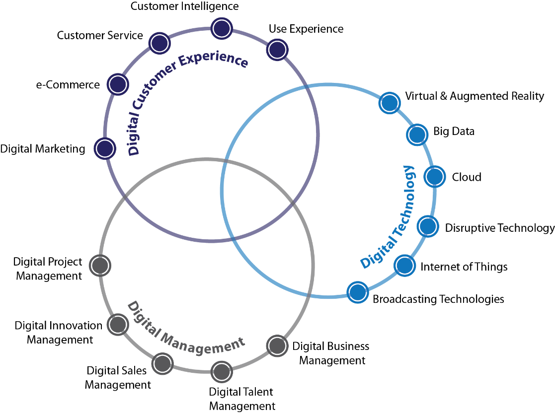 Figure 18 digital strategy including digital customer experience, virtual and augmented reality and digital management