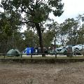 Tents and cars in an outdoor camping area